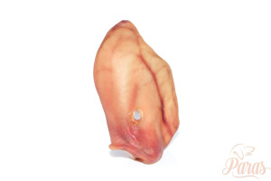 Paras - Schweinsohr XL1